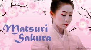 email-header-matsuri-sakura-2014